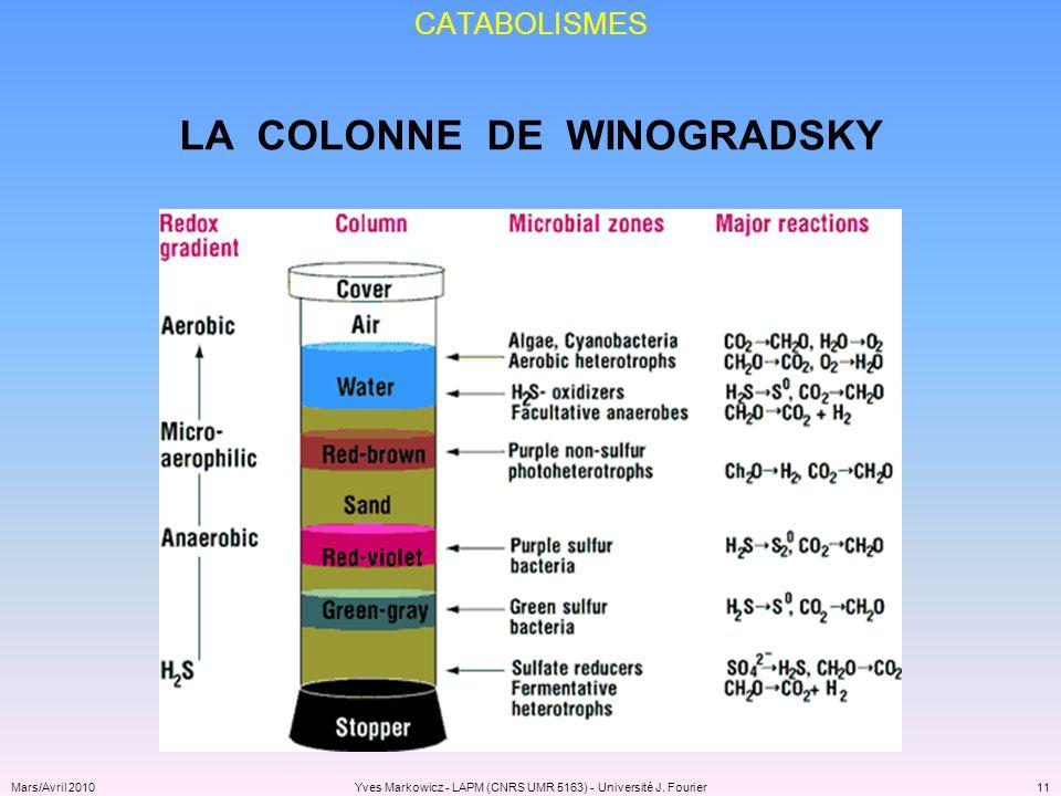 LA COLONNE DE WINOGRADSKY