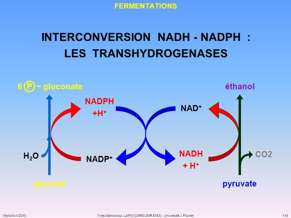 INTERCONVERSION NADH - NADPH : LES TRANSHYDROGENASES
