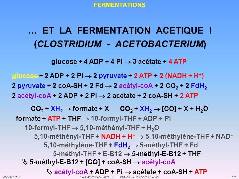 … ET LA FERMENTATION ACETIQUE ! (CLOSTRIDIUM - ACETOBACTERIUM)