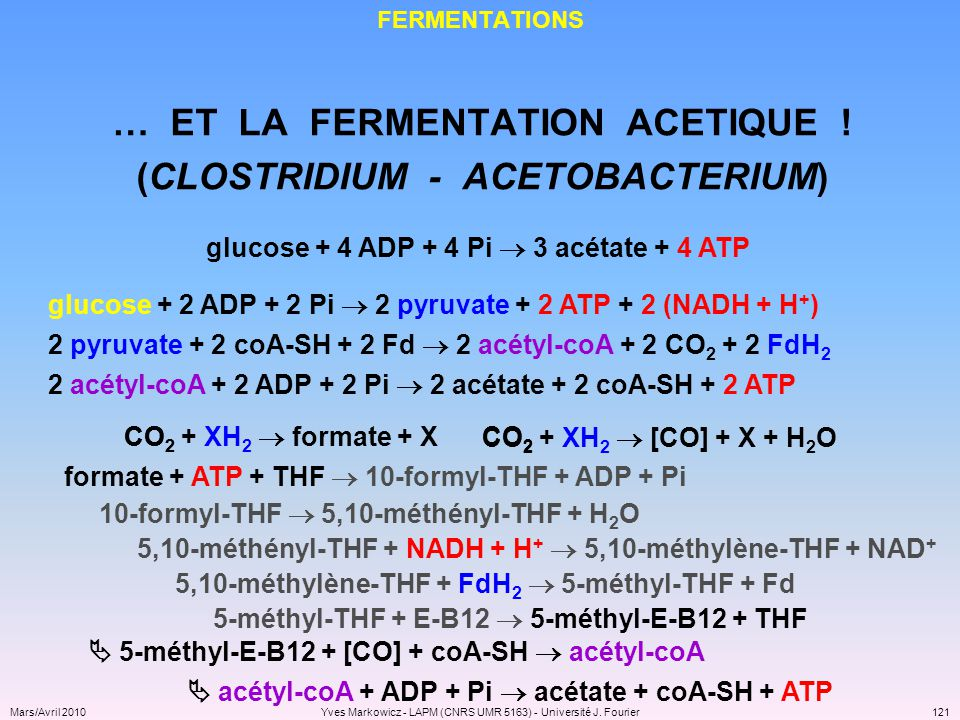 … ET LA FERMENTATION ACETIQUE ! (CLOSTRIDIUM - ACETOBACTERIUM)