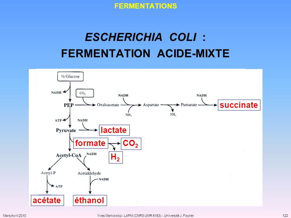 FERMENTATION ACIDE-MIXTE