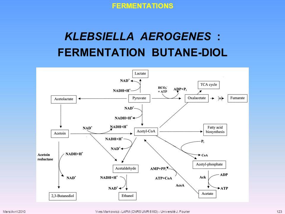 KLEBSIELLA AEROGENES : FERMENTATION BUTANE-DIOL