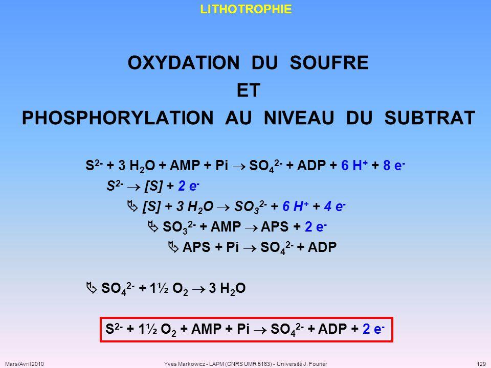 PHOSPHORYLATION AU NIVEAU DU SUBTRAT
