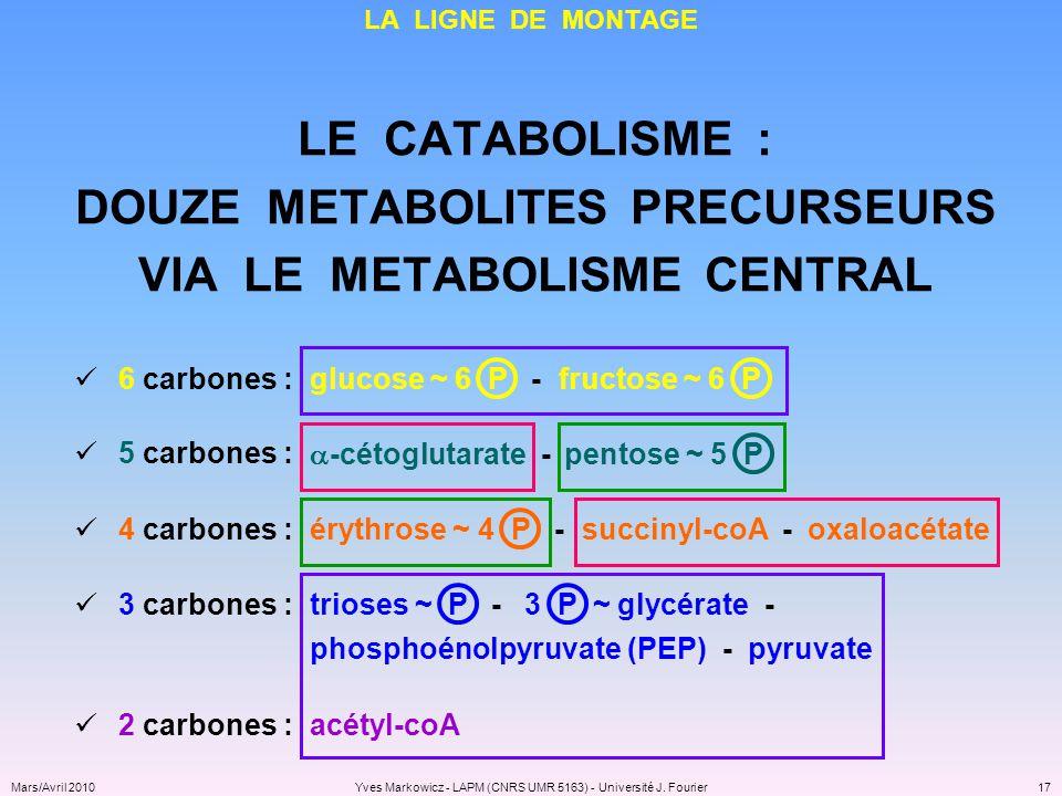 DOUZE METABOLITES PRECURSEURS VIA LE METABOLISME CENTRAL