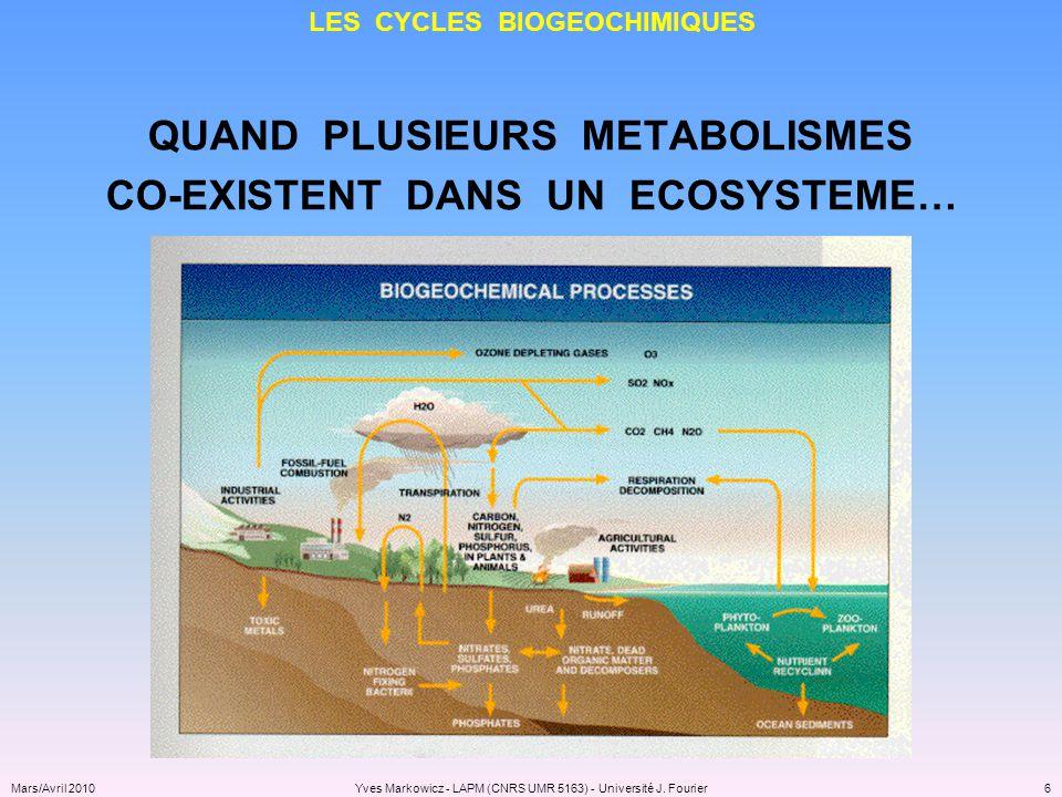 LES CYCLES BIOGEOCHIMIQUES