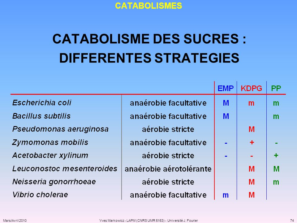 CATABOLISME DES SUCRES : DIFFERENTES STRATEGIES