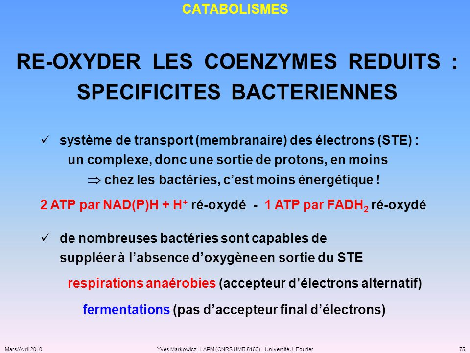 RE-OXYDER LES COENZYMES REDUITS : SPECIFICITES BACTERIENNES