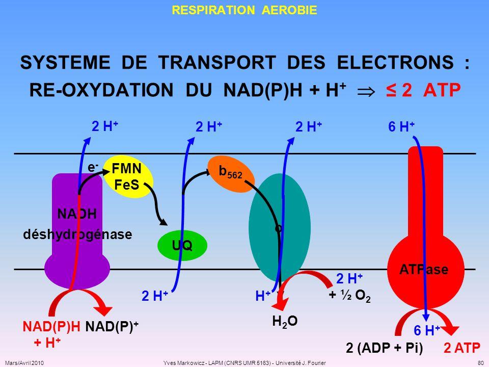 SYSTEME DE TRANSPORT DES ELECTRONS :
