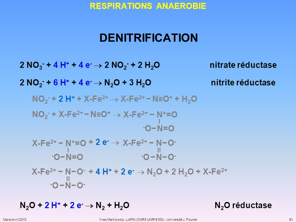 RESPIRATIONS ANAEROBIE