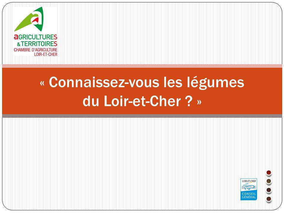 ConnaissezVous Les Lgumes Du LoirEtCher    Ppt Tlcharger