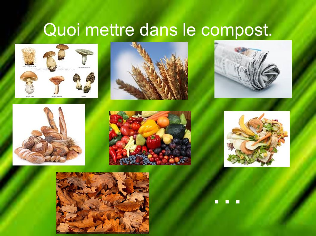 Le compost ppt video online t l charger for Quoi visiter dans le 78