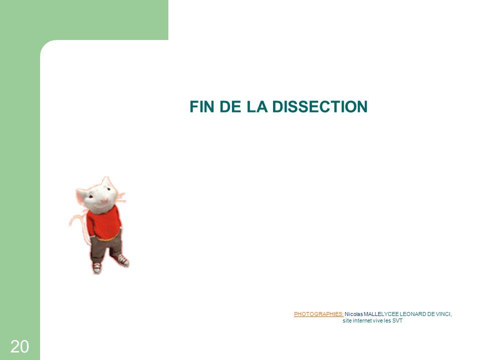 FIN DE LA DISSECTION PHOTOGRAPHIES: Nicolas MALLELYCEE LEONARD DE VINCI, site internet vive les SVT