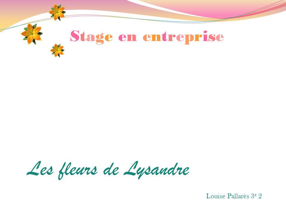 Stage en entreprise Les fleurs de Lysandre Louise Pallarès 3e 2