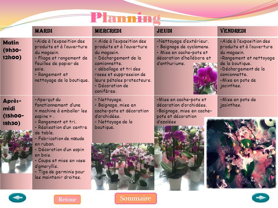 Planning Sommaire Matin (9h30-12h00) Après-midi (15h00-18h30) Retour