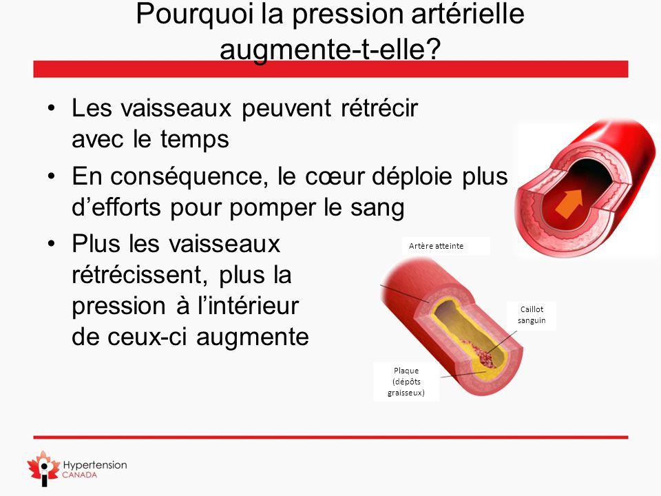 Pourquoi la pression artérielle augmente-t-elle