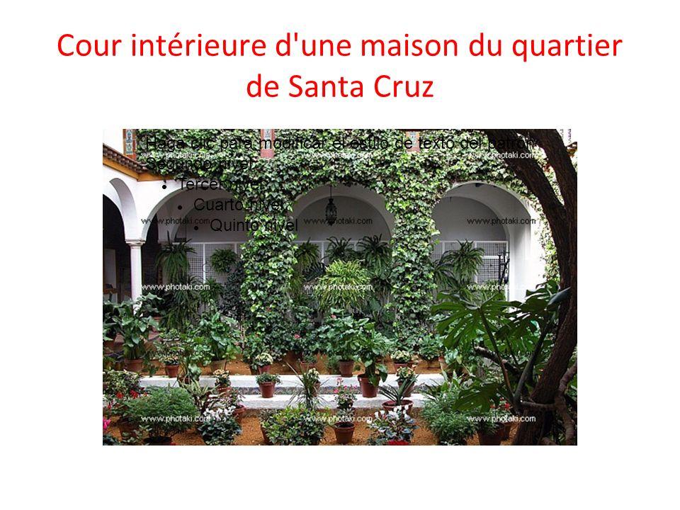 Cour intérieure d une maison du quartier de Santa Cruz