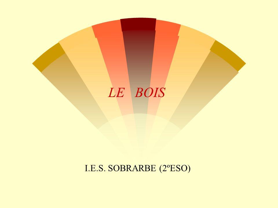 LE BOIS I.E.S. SOBRARBE (2ºESO)