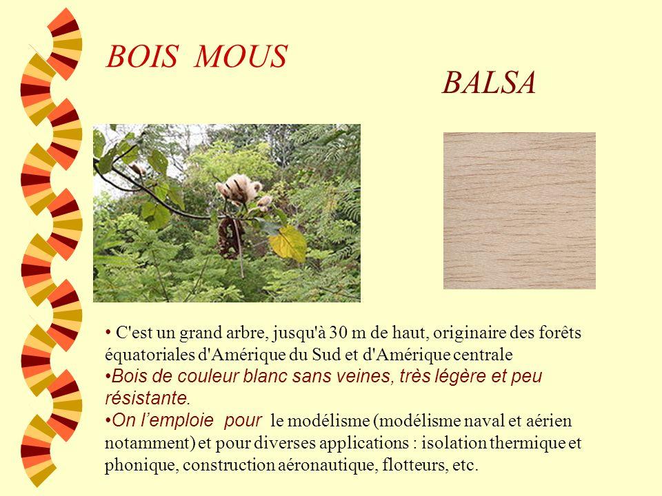BOIS MOUS BALSA. C est un grand arbre, jusqu à 30 m de haut, originaire des forêts équatoriales d Amérique du Sud et d Amérique centrale.