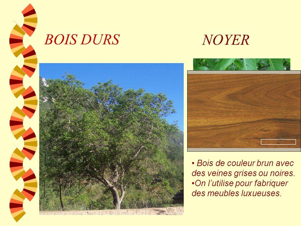 BOIS DURS NOYER Bois de couleur brun avec des veines grises ou noires.