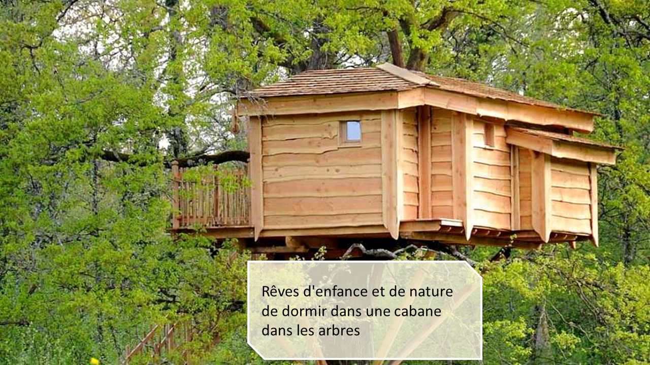 cabane dans les arbres l o les adultes retournent en enfance et o le r ve des enfants de. Black Bedroom Furniture Sets. Home Design Ideas