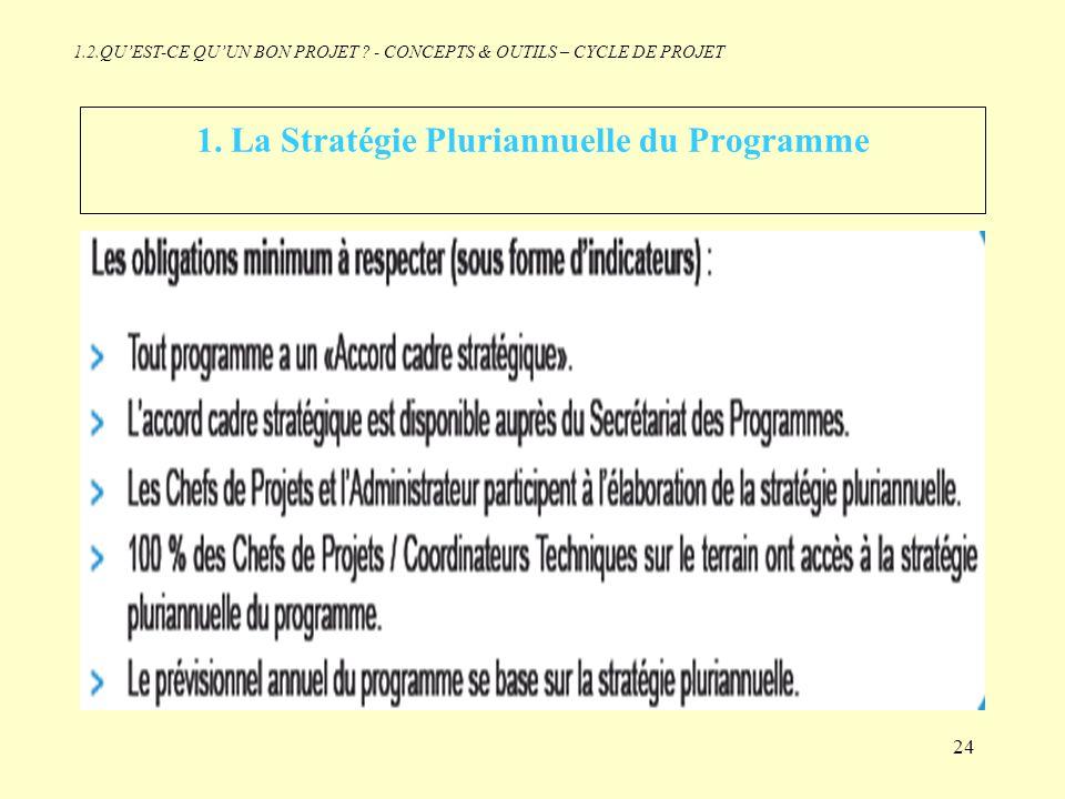 1. La Stratégie Pluriannuelle du Programme