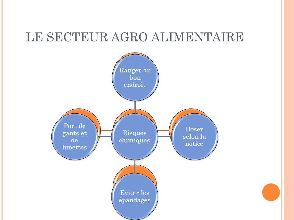 LE SECTEUR AGRO ALIMENTAIRE