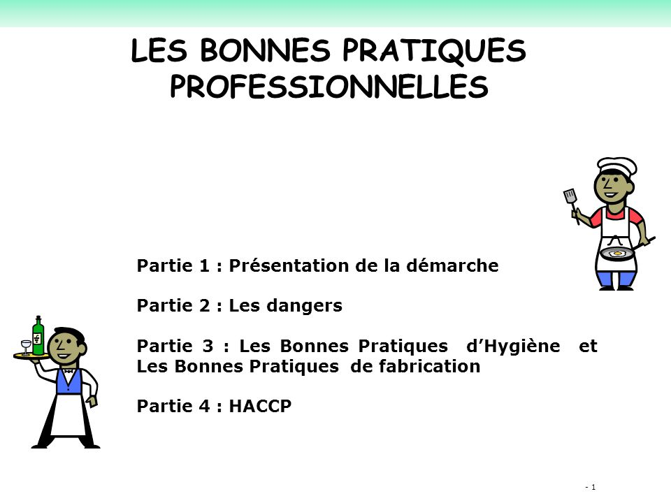 LES BONNES PRATIQUES PROFESSIONNELLES