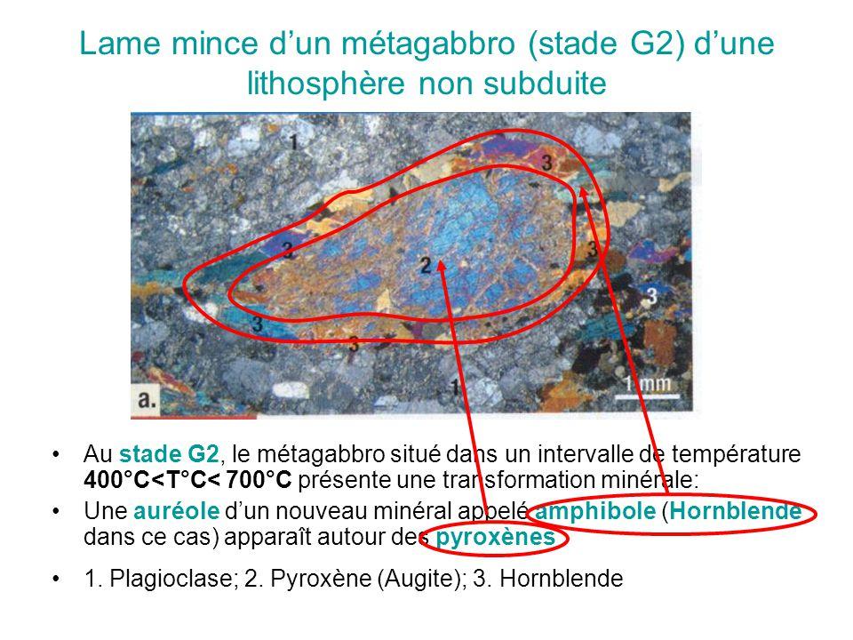 Lame mince d'un métagabbro (stade G2) d'une lithosphère non subduite