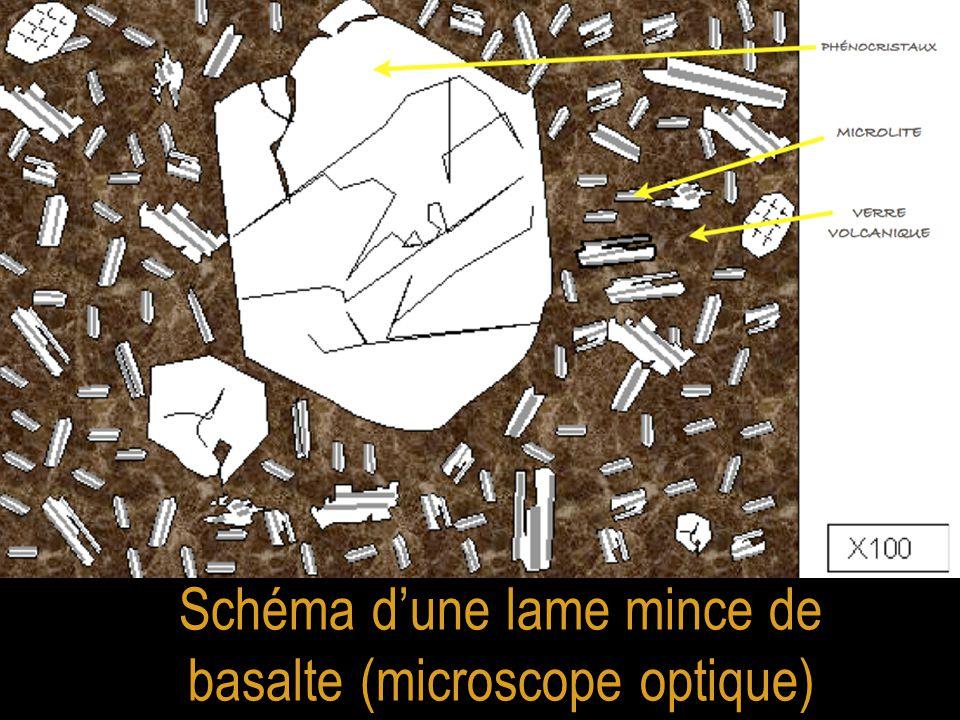 Schéma d'une lame mince de basalte (microscope optique)
