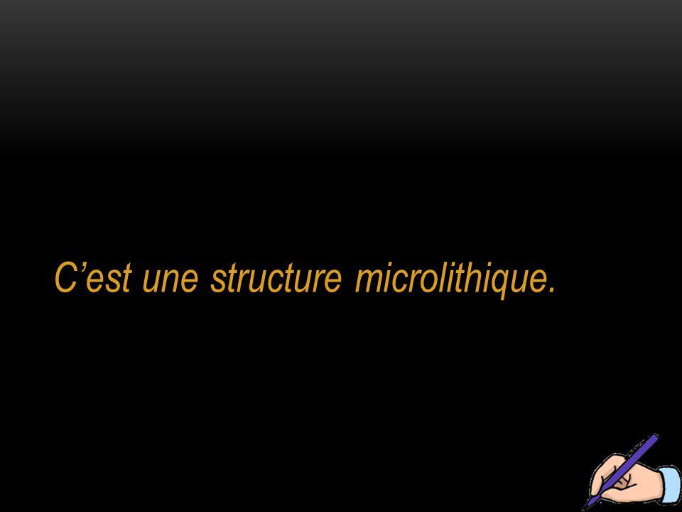 C'est une structure microlithique.