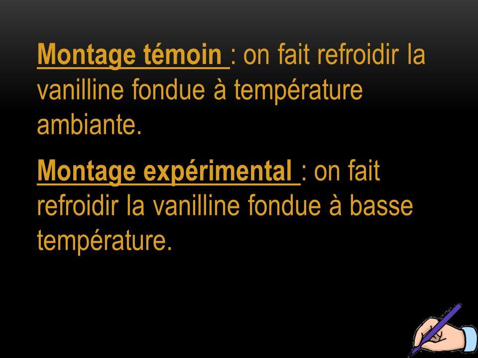 Montage témoin : on fait refroidir la vanilline fondue à température ambiante.