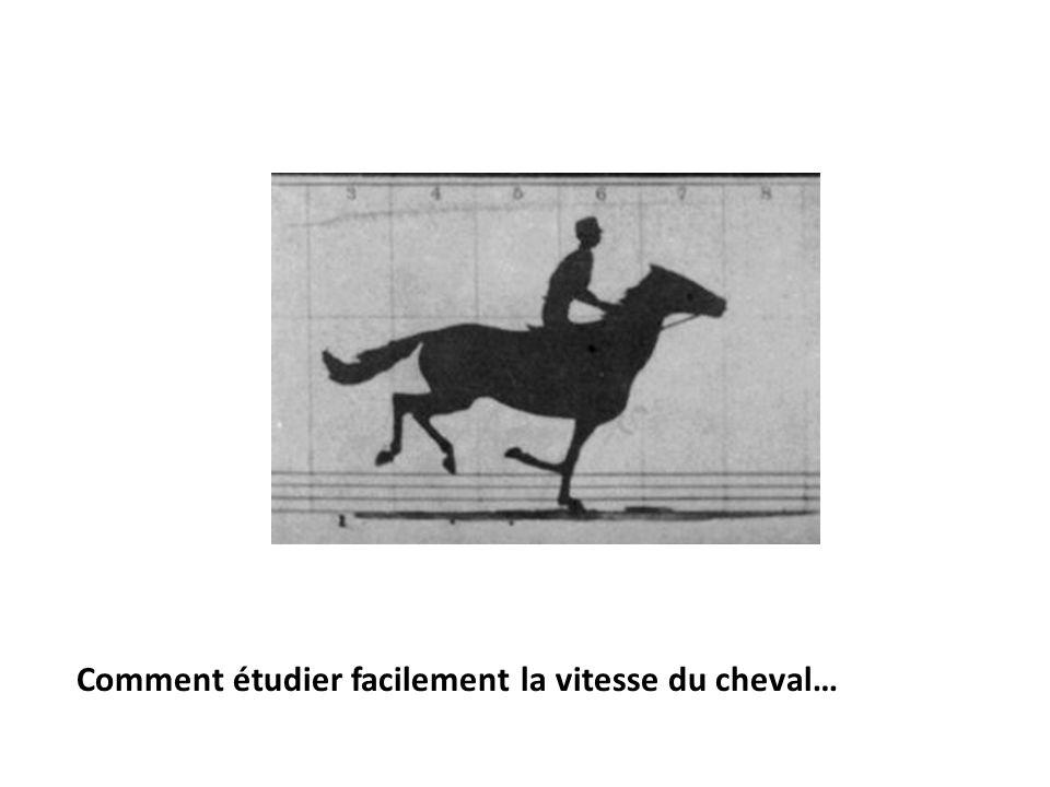 Comment étudier facilement la vitesse du cheval…