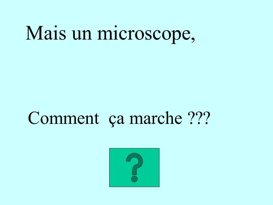 Mais un microscope, Comment ça marche