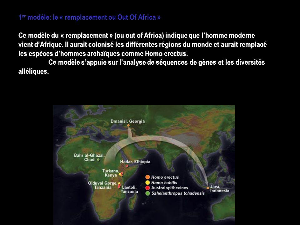 1er modèle: le « remplacement ou Out Of Africa »