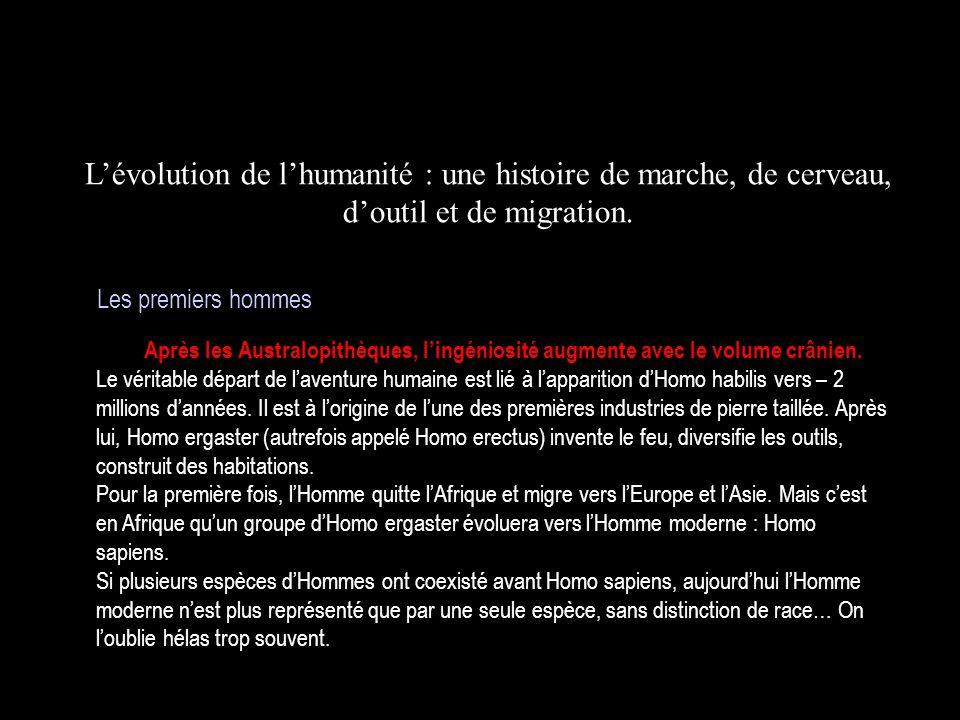 L'évolution de l'humanité : une histoire de marche, de cerveau, d'outil et de migration.