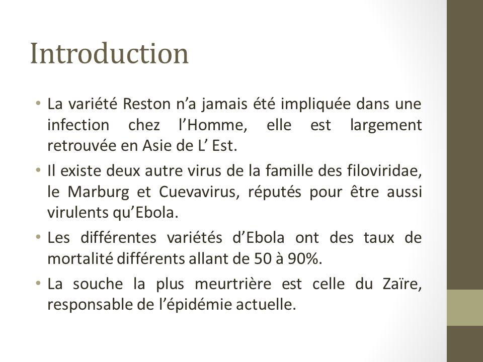 mythes et realites sur la maladie liee au virus ebola ppt t l charger. Black Bedroom Furniture Sets. Home Design Ideas