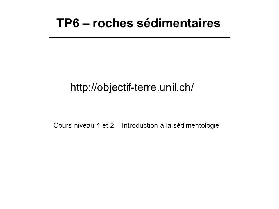 TP6 – roches sédimentaires