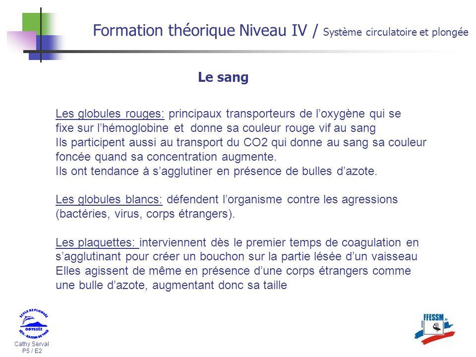Formation th orique niveau iv ppt video online t l charger for Niveau a bulle fixe