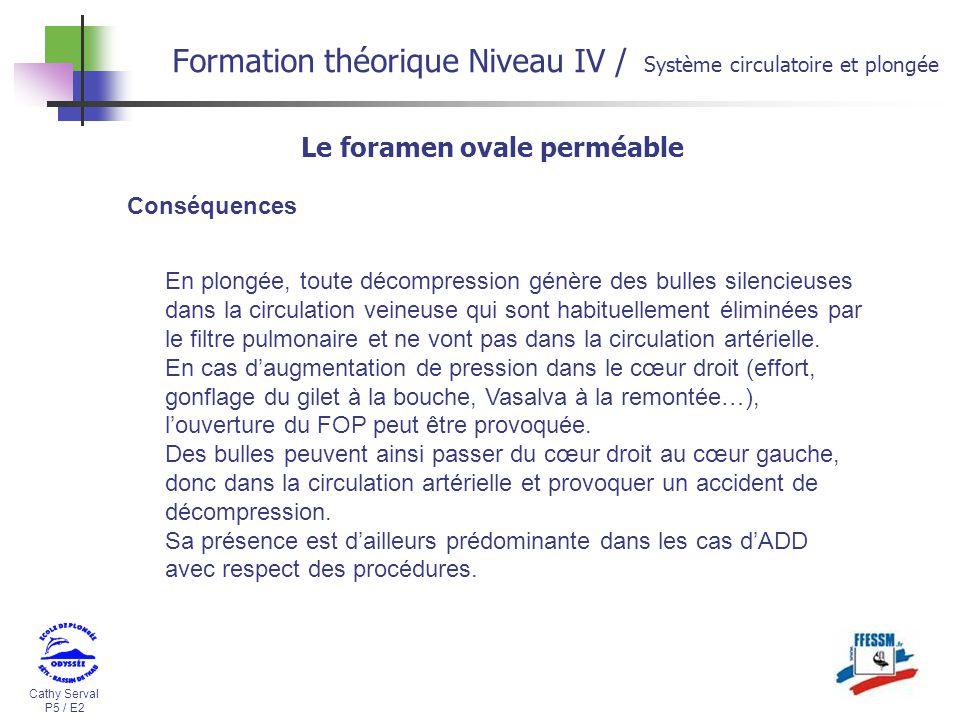 Formation th orique niveau iv ppt video online t l charger - Droit de passage servitude 30 ans ...
