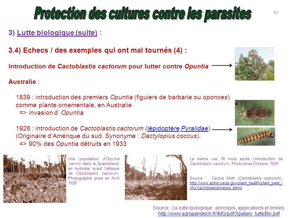 Protection des cultures contre parasites ravageurs et for Introduction synonyme