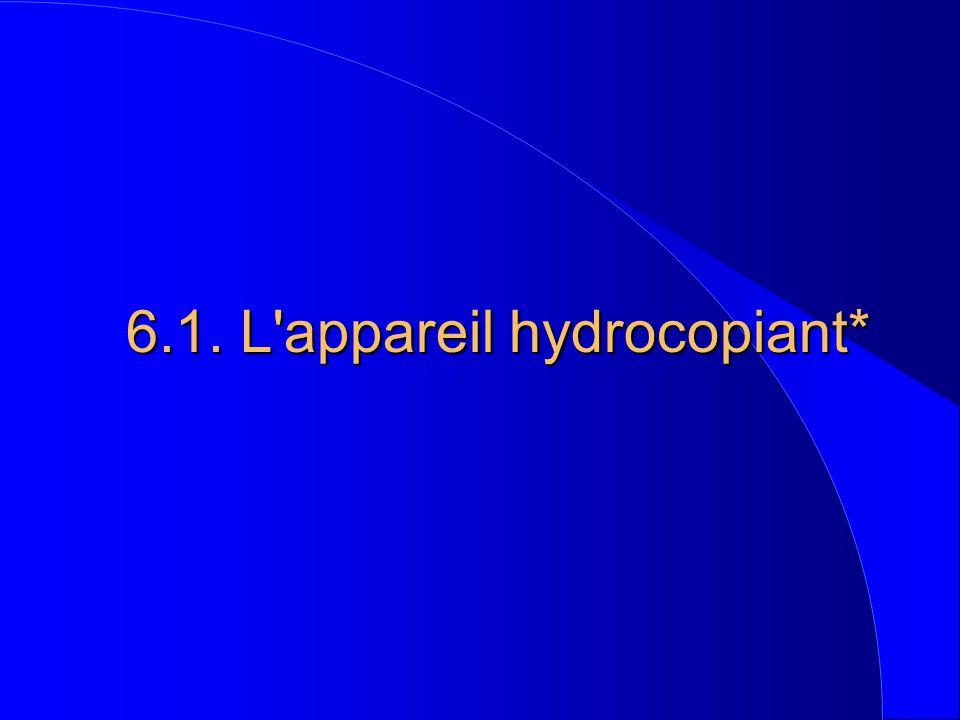 6.1. L appareil hydrocopiant*