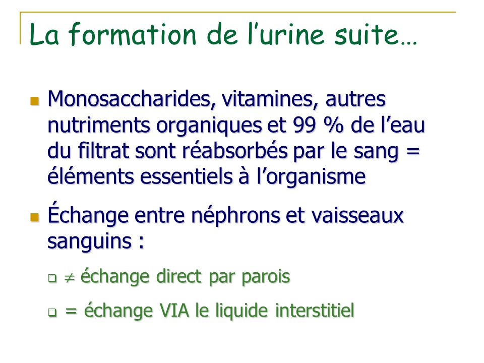La formation de l'urine suite…
