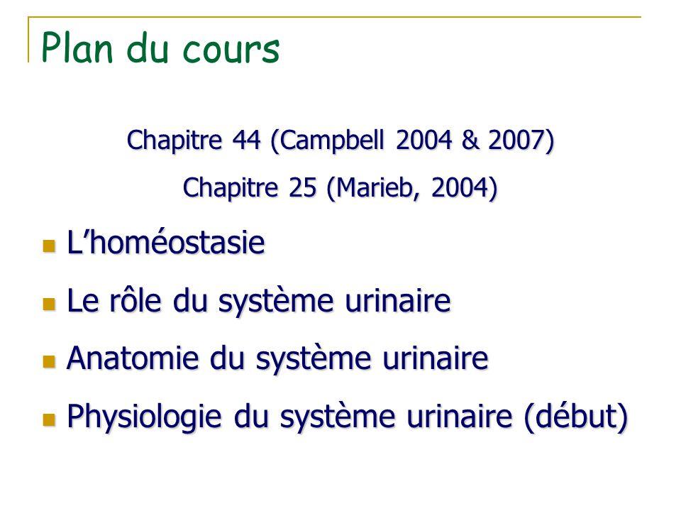 Plan du cours L'homéostasie Le rôle du système urinaire
