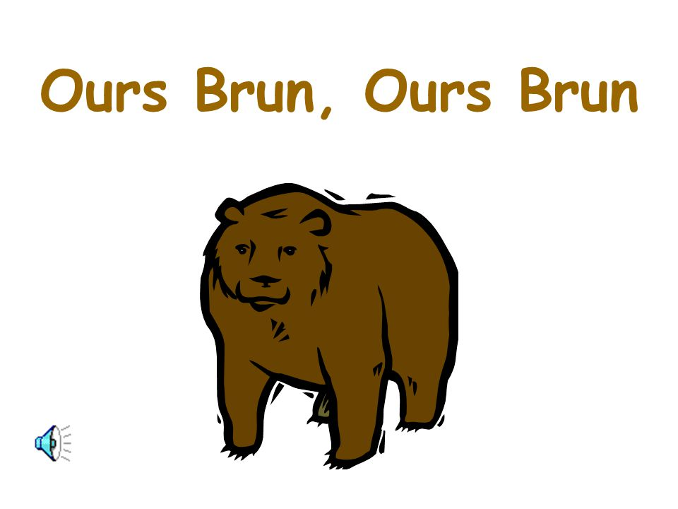 Ours Brun, Ours Brun