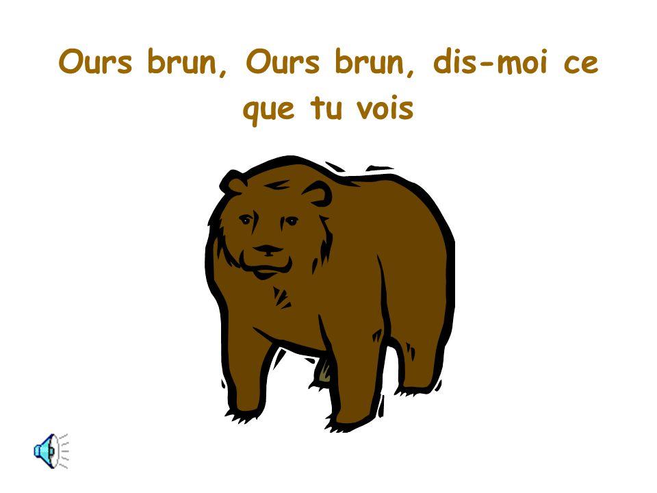 Ours brun, Ours brun, dis-moi ce que tu vois