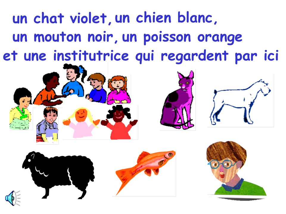 un chat violet, un chien blanc, un mouton noir, un poisson orange.