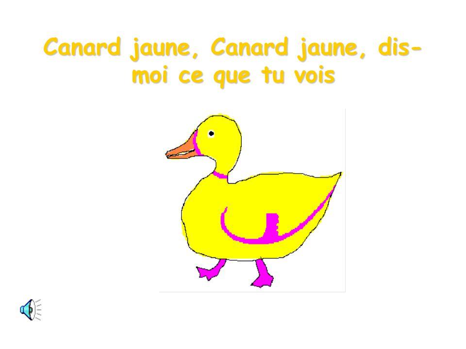 Canard jaune, Canard jaune, dis-moi ce que tu vois