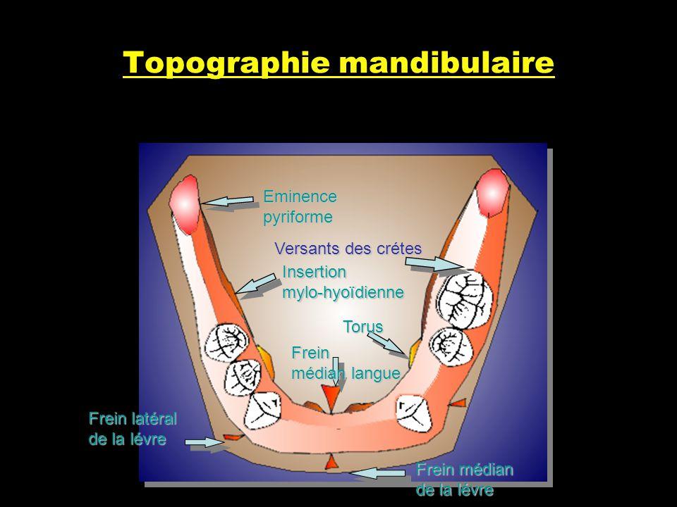 Topographie mandibulaire