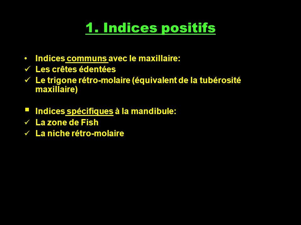 1. Indices positifs Indices communs avec le maxillaire: