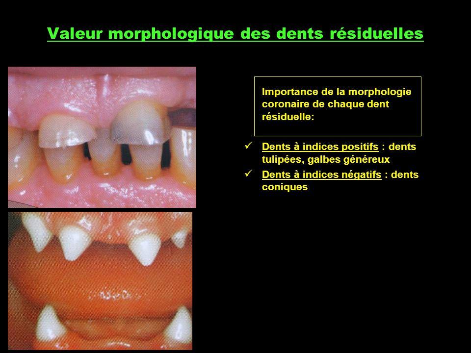 Valeur morphologique des dents résiduelles